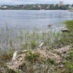 Vecinos realizarán una jornada de limpieza en la costa del Lago San Roque