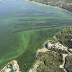 ONG presentó una denuncia penal para investigar volcamiento de cloacas en el San Roque