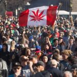 Canadá es el primer país del G-20 con marihuana legal